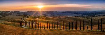 Toskana Landschaft mit Feldern , Zypressenweg und Hügellandschaft im Sonnenuntergang von Fine Art Fotografie