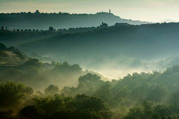 Früher Morgen in Val d'Orcia von Filip Staes