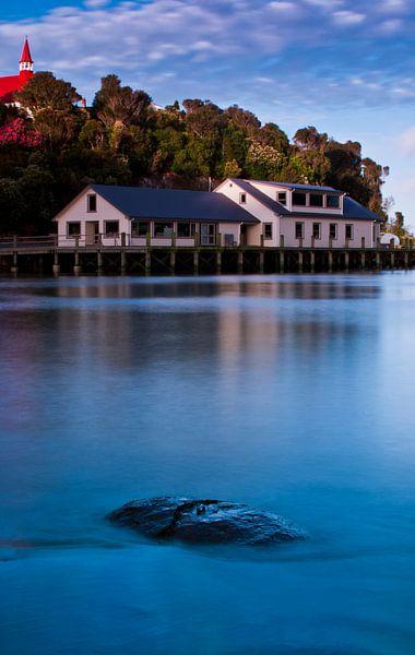 Oban - Stewart Island - Nieuw Zeeland van Ricardo Bouman | Fotografie
