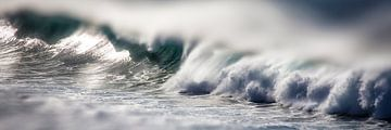 Zeesurf van Uwe Merkel
