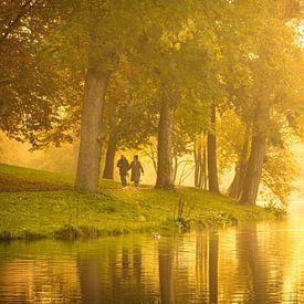 Gouden mist in het Noorderplantsoen, Groningen van Hessel de Jong