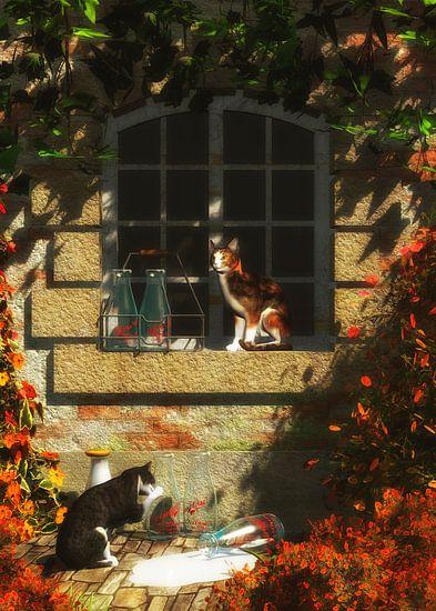 Katten – Katten die op meer melk wachten