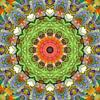 Mandala voorjaarskleuren blokken van Marion Tenbergen thumbnail