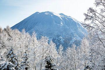 Vulkaan en besneeuwde bomen van Hidde Hageman