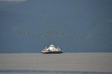 Ferry in Noorwegen van