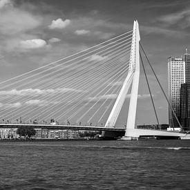 Rotterdam, Erasmusbrug. van Lorena Cirstea