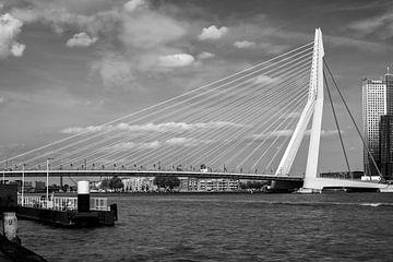 Rotterdam, Erasmus bridge. sur Lorena Cirstea
