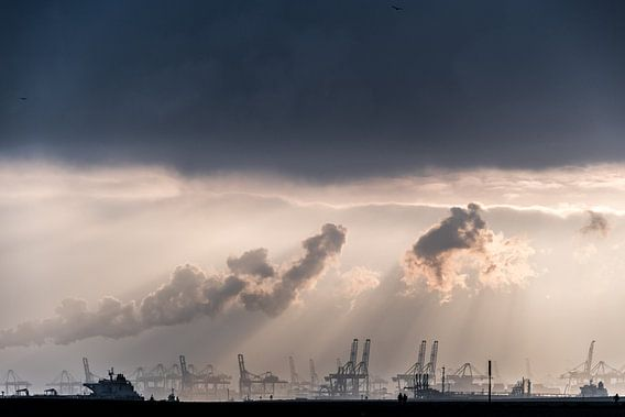 Maasvlakte, Rotterdam / Hoek van Holland