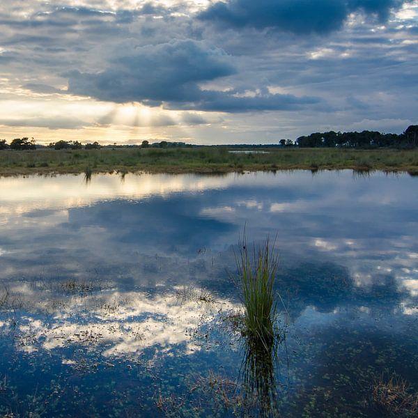Strabrechtse Heide 133 van Desh amer