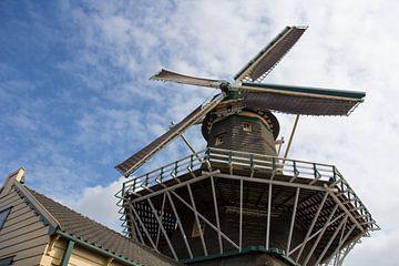 Sägewerk d'Heesterboom (De Heesterboom) Leiden von Carel van der Lippe