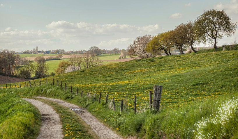 Bulkemsdalweg in Simpelveld van John Kreukniet