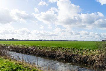Zeeuws landschap bij Hulst met heldere lucht en wolken. Eindeloze velden en graslanden, zonnige dag. van Leoniek van der Vliet
