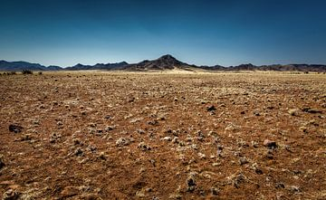 entlang des Weges in Namibia von Ed Dorrestein