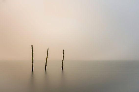 a foggy day...