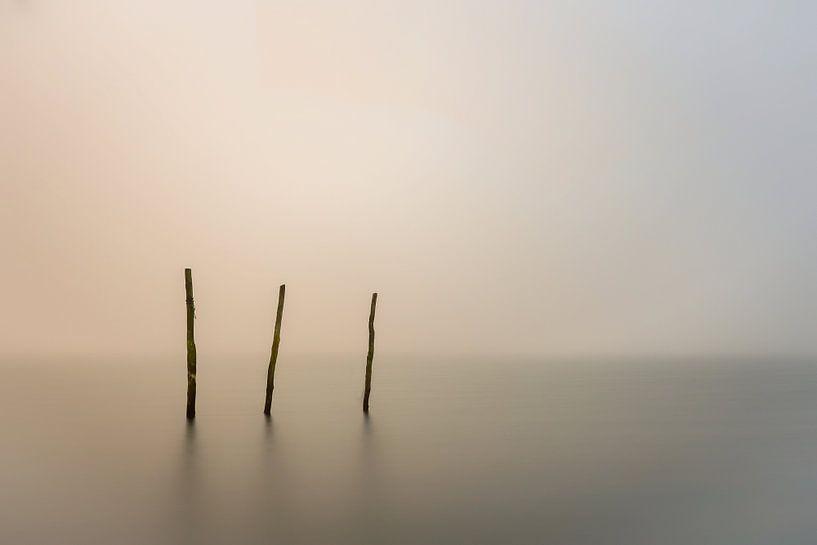 a foggy day... van Jan Mulder Photography