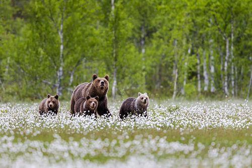Bärenmama mit ihrer Rasselbande van Daniela Beyer