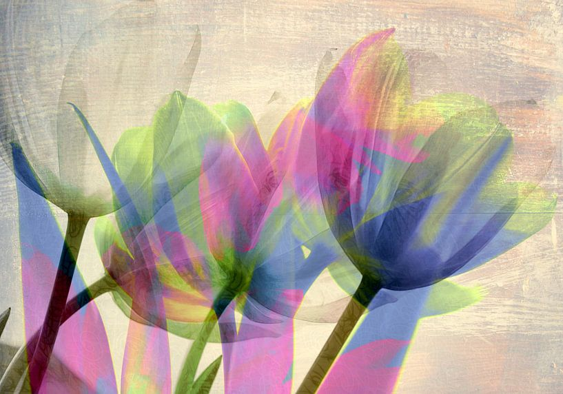 Bouquet de tulipes van Martine Affre Eisenlohr