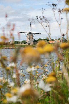 Molen op Texel van Map of Joy