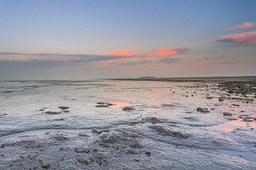 Côte de la mer des Wadden sur Annie Jakobs