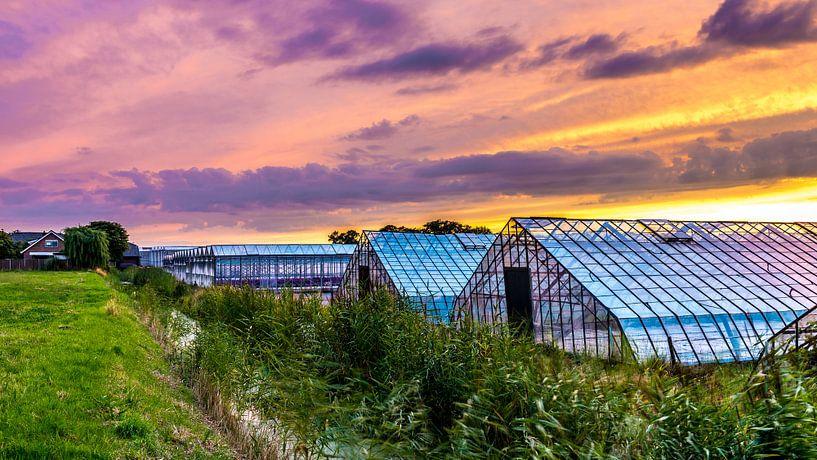 Glastuinbouw bij zonsondergang  van Marco Schep