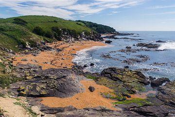 Der orangefarbene Strand in Neuseeland von Linda Schouw