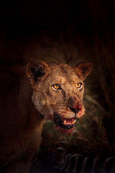 Bloody Lion van Thomas Bartelds