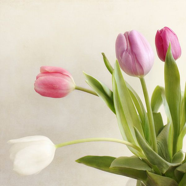 Boeket tulpen van LHJB Photography