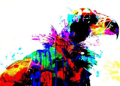 Bald eagle van Wilfried van Dokkumburg