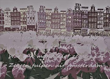 Tulpen uit Amsterdam van ! Grobie