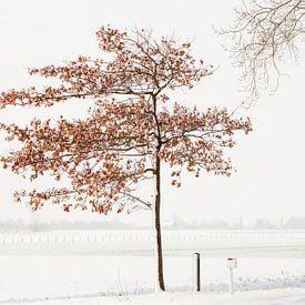 Winter in Nederland van Frank Peters
