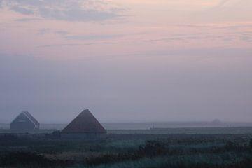 Schapenboet bij zonsopkomst von Martijn Smit