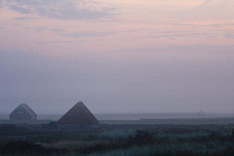 Schapenboet bij zonsopkomst van Martijn Smit