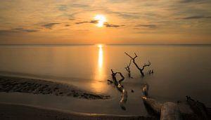 sunset on the beach van