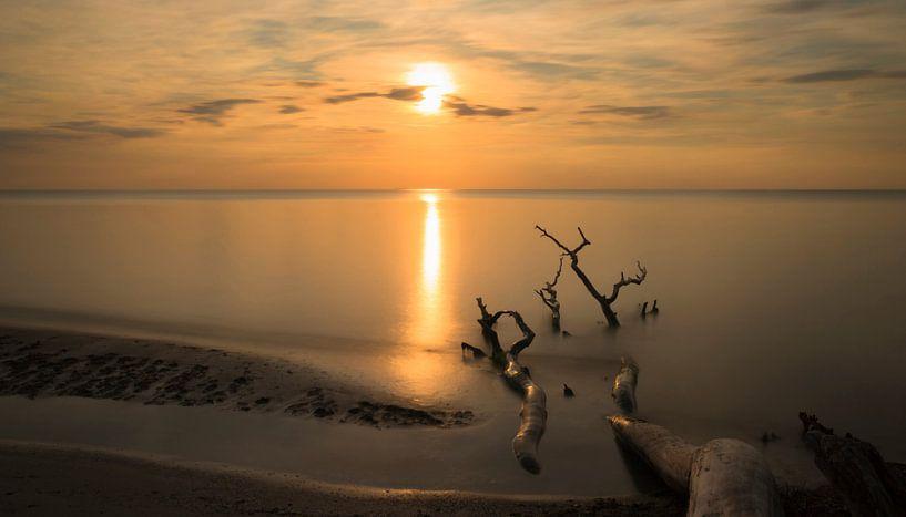 Strand-Stillleben von Annette Sturm