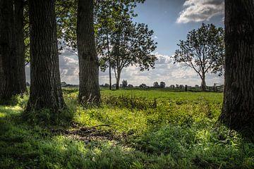 Hollands polderlandschap bij Langerak van Kees van der Rest