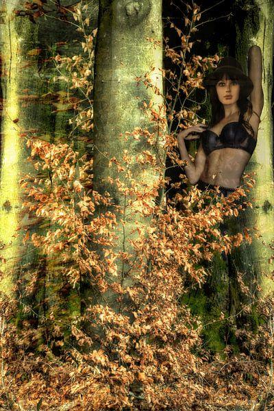 Fata Morgana im Herbstwald von Christine Nöhmeier