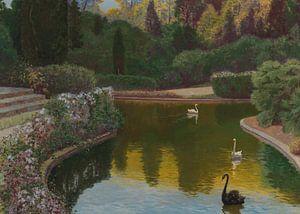 Ein Teich mit Schwänen von Antonije Lazovic