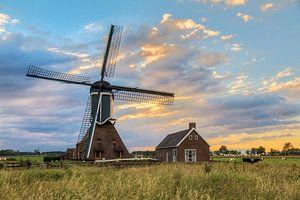 Hollands landschap met molen