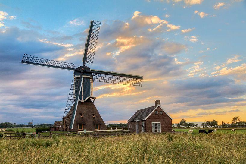 Hollands landschap met molen van Dennis van de Water