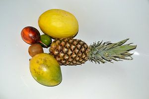 Fruit van Ger Nielen