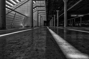 Parking Lines zwart/wit van