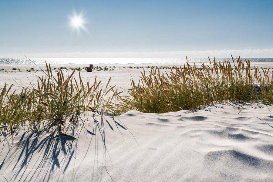 Nordsee Dünenzauber van Reiner Würz / RWFotoArt