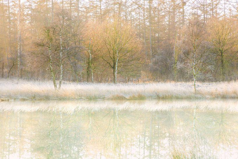 Winterse reflecties van Karla Leeftink