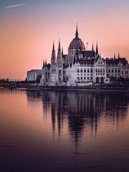 Budapest Parliament van Iman Azizi