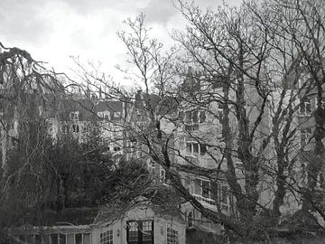 Amsterdamer Hofgarten von Marianna Pobedimova
