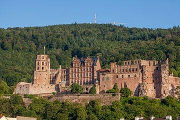 kasteel, oude stad, Heidelberg van Torsten Krüger