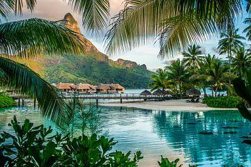 Lagoonarium Bora Bora van