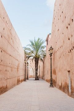 Palme in die Altstadt von Marrakesh von Leonie Zaytoune