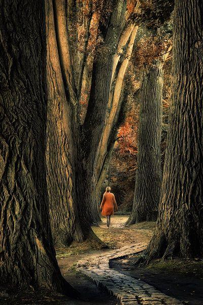 Take a walk van Martin Podt