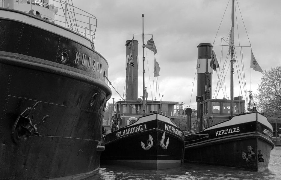 Sleepboten Hudson, Volharding en Hercules in haven Maassluis